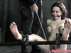 chaines, chained, dominated, bdsm, sub