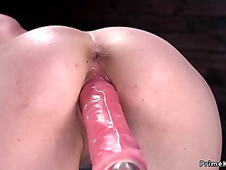Solo brunette in doggy bangs machine